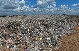 «Мусорное» дело: на балашихинской свалке могут найти состав преступления