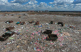 «Мы зарастем мусором». Закрытие полигона «Кучино» не решило проблему — подмосковные свалки скоро переполнятся