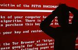 «Крепкого орешка 4.0» у нас не будет». Вирус Petya России не страшен?