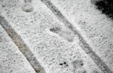 Питер в снегу в июле: «Град разгребали зимними лопатами»
