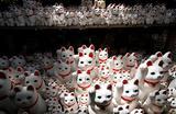 Японские фигурки кошек Манеки Неко в храме Готокудзи в Токио, Япония.