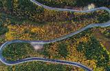 Вид на федеральную трассу Р257 «Енисей» в районе Сибирской тайги за пределами Красноярска, Россия 21 сентября 2017.