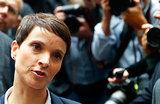 Раскол в «Альтернативе для Германии»: «Партия может распасться»