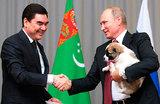 У Путина появился «верный друг»