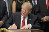 Дональд Трамп заявил о пересмотре ядерной сделки с Ираном