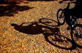 Человек катается на велосипеде в Зенице, Босния и Герцеговина.
