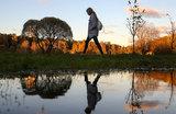 Москвичи пытаются спасти исторический парк в Покровском-Стрешневе от экоцида