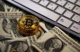 Криптоограбление: у мужчины украили биткоины на 15 млн рублей