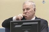 Суд вынес Младичу приговор за боснийский геноцид