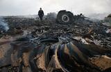 Докажите, что он — Дельфин. Российский генерал сыграл ключевую роль в крушении MH17?