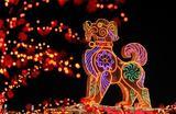 Новогодний фонарик в Даляне, Китай.