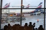 «Аэрофлот» требует уголовного наказания для очередного авиадебошира