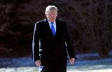 Свой среди чужих: поедет ли протекционист Трамп на бизнес-форум в Давосе?