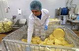 Плавленый сыр под угрозой. В Союзмолоке рассказали об опасности предложения Ткачева