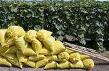 ФАС одобрила знаковую сделку Bayer и Monsanto