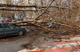 Ураган отбушевал, но опасность усиления ветра сохраняется