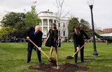 Президент США Дональд Трамп и президент Франции Эммануэль Макрон сажают дуб на лужайке Белого дома в Вашингтоне, США.