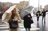 Москву накроют ветер и дожди, но тепло близко