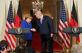 Обзор инопрессы. Германия отказалась от борьбы еще до ее начала