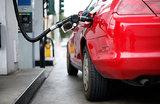 Цены на бензин замерли после «Прямой линии» с Путиным