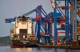 Остановка Владивостокского морского торгового порта парализует город