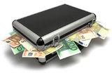 Евросоюз ужесточает правила ввоза и вывоза денег