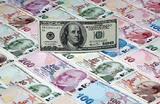 «Послушали и сделали наоборот». Как в Турции отнеслись к призыву Эрдогана менять доллары на турецкую лиру