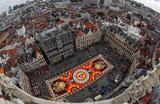 Каждые два года на центральной площади Брюсселя Гран-Плас расстилают тематический  цветочный ковер площадью 1800 кв. метров. Узор нынешнего ковра посвящен культурной гордости Мексики – городу Гуанахуато. Первый ковер из цветов был выложен на площади в 1971 году.