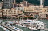 СМИ: зять богатейшей женщины Монако признал вину в убийстве тещи