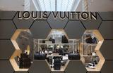 «Застрявшие в Сибири» сотрудники дома Louis Vuitton прибыли в Шанхай