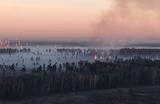 «Лосиный остров» снова в дыму: жители Балашихи жалуются на запах гари