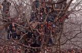 Люди ждут начала погребальной службы по полицейскому, который погиб в перестрелке с сотрудниками спецслужб Индии в Кашмире.