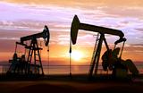 Падение нефтяных котировок: реакция рубля