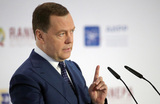 «Регуляторная гильотина»: Медведев предложил снизить нагрузку на бизнес
