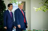 Абэ выдвинул Трампа на Нобелевскую премию мира