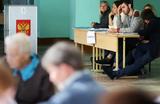 «Никакого залетного воронья»: депутат предложил запретить наблюдателям ездить на выборы в другие регионы
