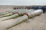 Путин о США: «Пусть посчитают дальность и скорость наших перспективных систем оружия»