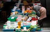 Япония первой в мире разрешит продажу продуктов с отредактированным геномом