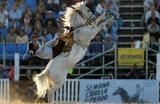 Соревнования лучших наездников — гаучо — во время Креольской недели в Монтевидео, Уругвай.