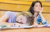 Вуз не панацея: все больше выпускников в России отказываются от высшего образования