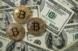 Всего за сутки курс биткоина превысил 11 тысяч долларов