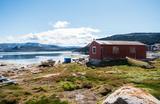«Сегодня земля — единственный невосполняемый ресурс». Зачем Трампу Гренландия?