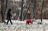 В Москве и Подмосковье в выходные может пойти снег
