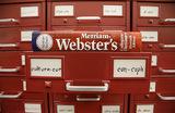 «Они» в единственном числе — норма, решил словарь Webster