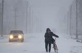 Алтайский край занесло снегом