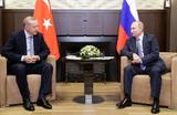 «Перейти к дипломатии». Путин и Эрдоган обсудили кризис в сирийском Идлибе