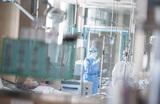 Южная Корея, Италия и Иран стали новыми очагами коронавируса. Что будет дальше с инфекцией?