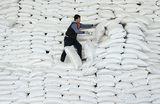 Сахарным заводам в России пришлось несладко — предприятия закрываются