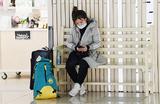 Запрет на авиасообщение с Южной Кореей: потеряют авиакомпании, туроператоры и пассажиры