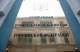 ЦИК определился с формой общероссийского голосования по поправкам в конституцию